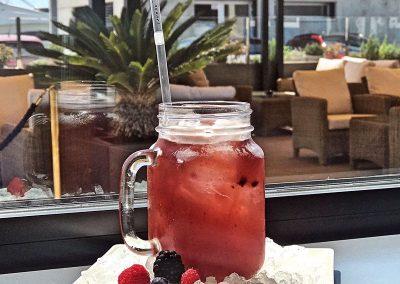 Bebidas-Frutos rojos
